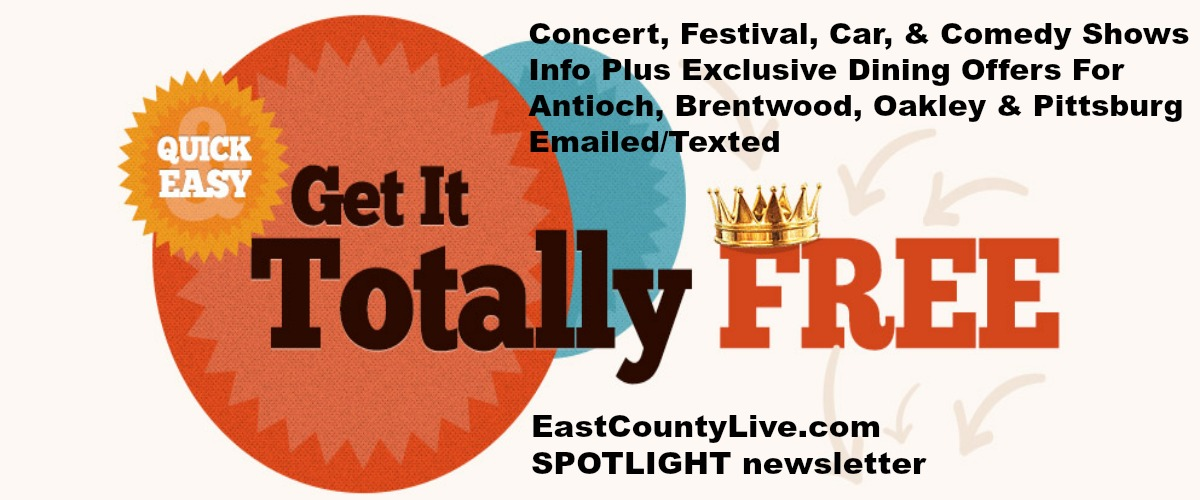 Festival, Concert, Comedy, Car, Dining & Art Show Information